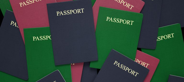Visa and Immigration Process Lyon - Expat Services